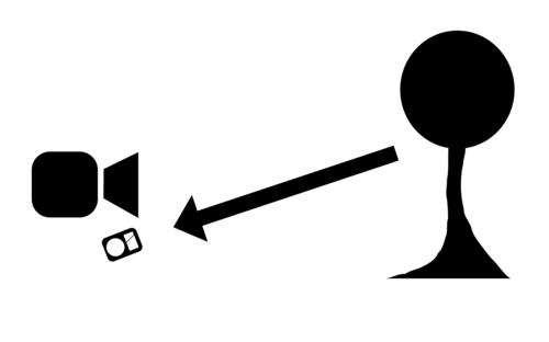 Bei der Lichtmessung wird mit einem Handbelichtungsmesser das Licht gemessen, welches das Motiv beleuchtet. Dabei wird in der einfachsten Form vom Motiv in Richtung Kamera gemessen.